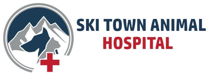 Ski Town Animal Hospital